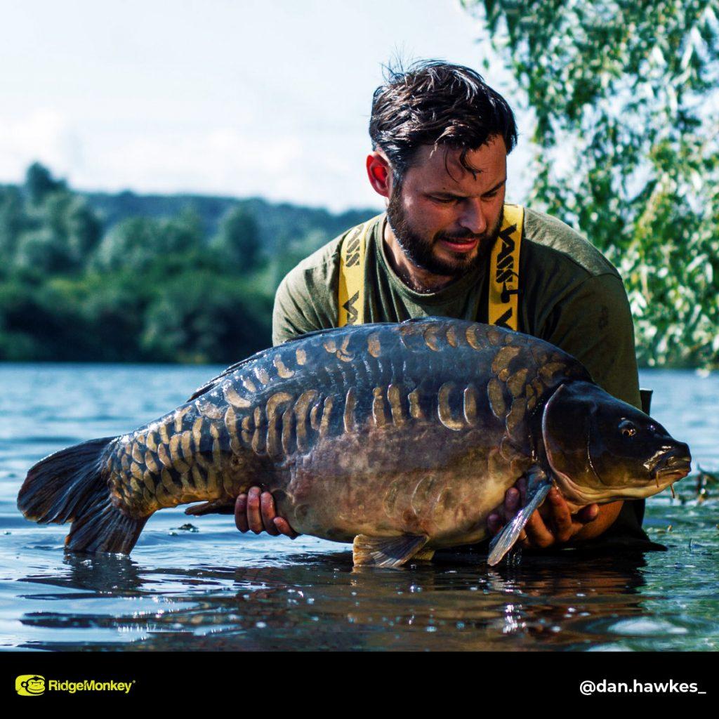 Dan Hawkes 37lb big carp